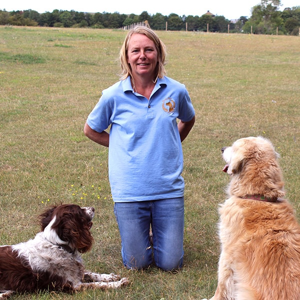 Alex bracken dog training Banstead Epsom Ewell Cheam Woodmanstern Coulsdon Purley Caterham Chessington Ewell