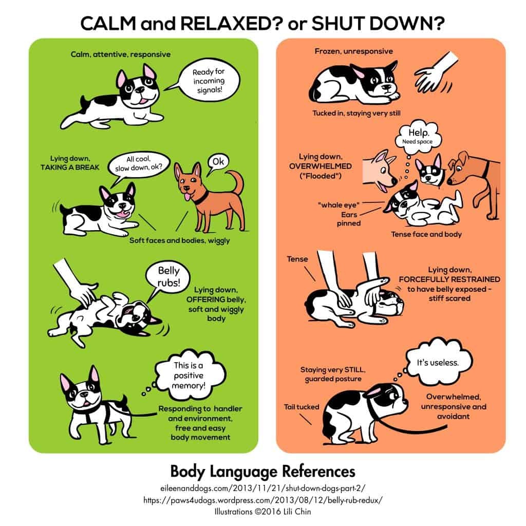 Calm and relaxed or shut down infographic Lili Chin